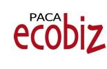 pacaecobiz-anse technology